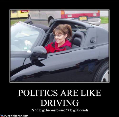 political-pictures-sarah-palin-politics